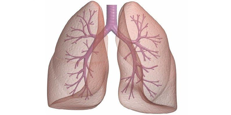 Ağciyər absesi
